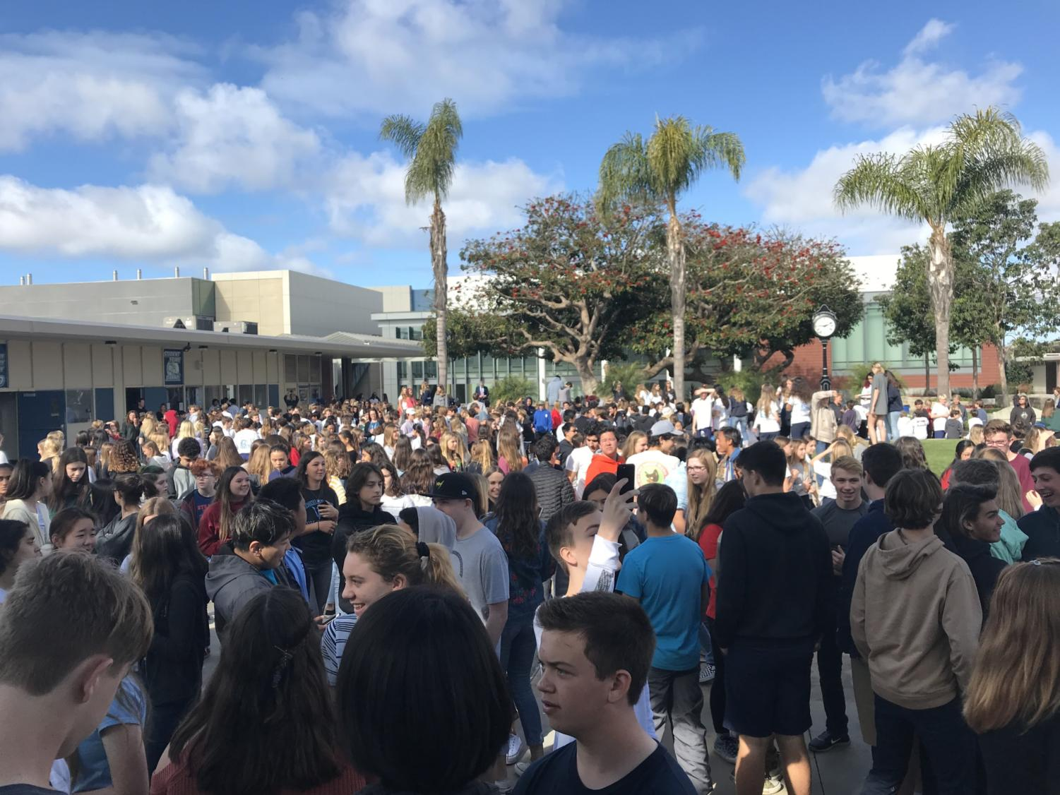 Hundreds of Sea Kings join the nation in solidarity with Parkland, FL.