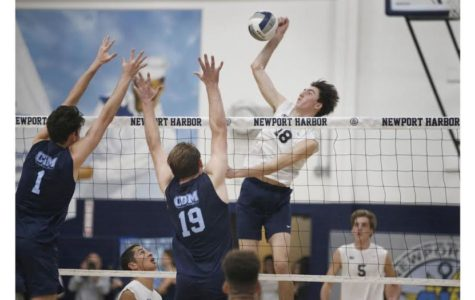 Boys Volleyball: Battle of the Bay