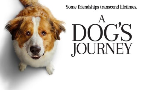 A Dog's Journey - Movie Review