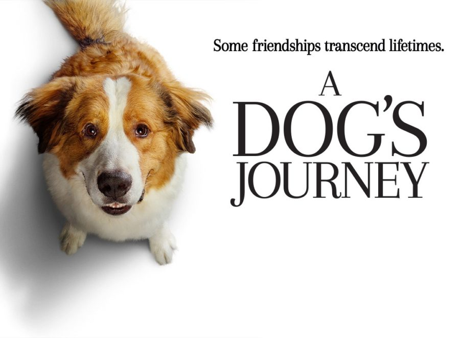 A+Dog%27s+Journey+-+Movie+Review