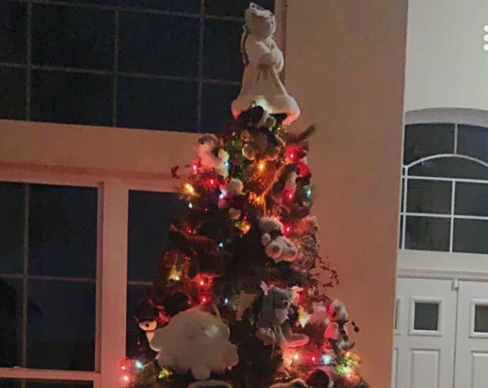 Unique Family Christmas Trees
