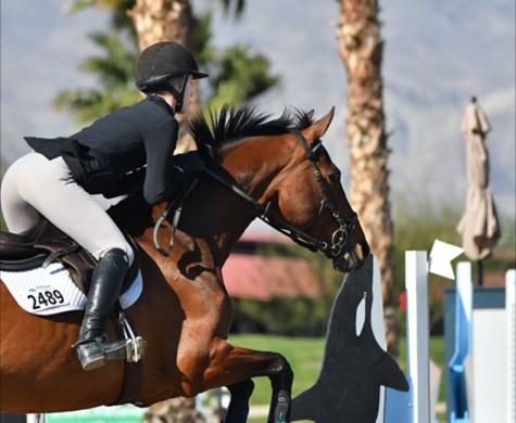 Horse Show: Desert Circuit