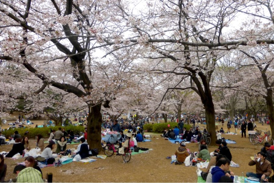 Lesser-known+Spring+Traditions+and+Celebrations