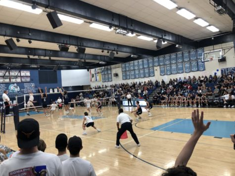 Boys Volleyball Battle of the Bay