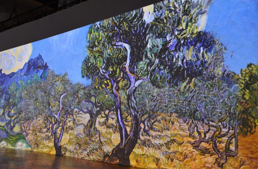 Van Gogh's Digital Immersive Exhibits